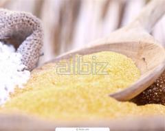 Egg powder (Technical Specification of Ukraine (TU