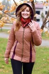 Jacket fall - winter of PK1-176