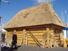 Services of the carpenter-cutter of fellings