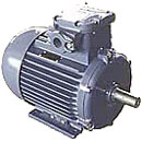Explosion-proof motors in assortmen