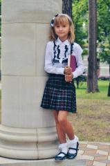 Skirt school in section