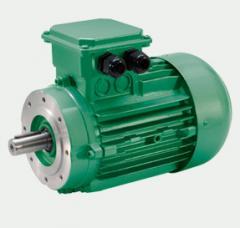 Engines of alternating current Neri Motori