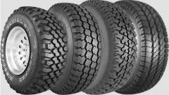 ¡Los neumáticos en Zaporozhe, el Autoneumático en
