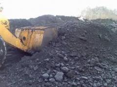 Угли каменные антрациты (уголь)