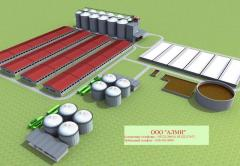 Production of electric energy on a cycle: biomass