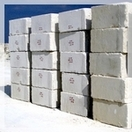 The wall block limestone nummulit the Pit Rocky 2