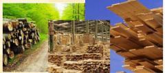 The enterprises prozvodyashchy building materials