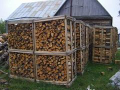 Firewood of strong breeds of a tree: oak;