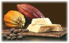 The cacao butter deodorized (JB of Sosoa, ADM) for the chocolate industry