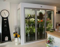 Refrigerating chambers show-windows for storage