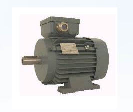 Electric motors, electric equipment, warning