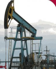 Оборудование нефтепромысловое добычное устьевое
