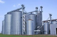 Elevators for grain