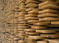 Timber. To buy timber. Price timber.