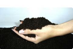 Biohumus (vermikompost)