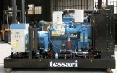 Дизельные генераторы TESSARI PPW