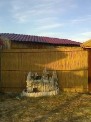 Камышовый забор , забор з очерету .
