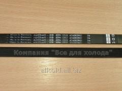 Belt 1215 H8