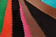 Skin for footwear, a lining for footwear from