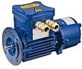 Explosion-proof electric motors with an