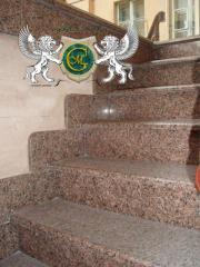 Ladders, steps