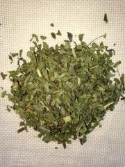 Ivan tea (willow-herb)