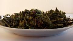 Pustyrnik (grass)