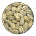 Pearl barley wholesale