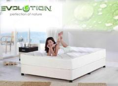 Mattresses (mattresses) orthopedic: Akant,