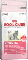 Kitten food from 4 to 12 months Royal Canin Kitten