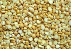 Горох Виолена Зерновые, бобовые