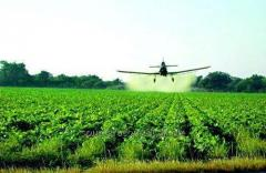 Herbicide of continuous action Test (Raundap Max)