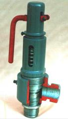 Spring safety valve 17s42nzh