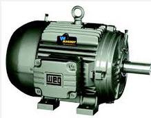 Hysteresis T32 UN synchronous motor