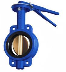 Locks rotary disk Baterflyay type, Du-40-300