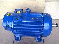 Crane MTH, MTF, MTM, MTKH, MTKF electric motors