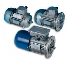 The electric motor is single-phase asynchronous
