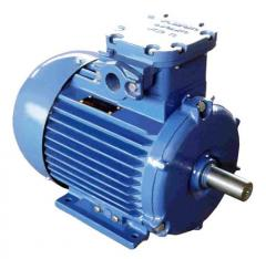 Three-phase explosion-proof motors asynchronous