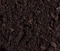 To buy peat briquettes in Kiev and Kiev region