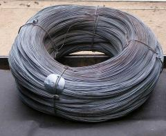 Spring wire 10 60C2A
