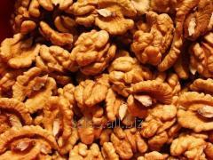 The walnut is chishchenny