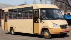 Buses are tourist, to buy buses tourist, buses