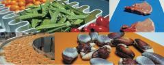 Conveyer belts food