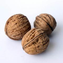 Грецкие орехи в скорлупе калибр +28