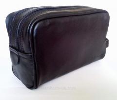 Cosmetics bag - a nesessor man's, skin of