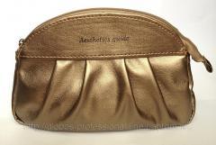 Cosmetics bag of Aesthetics guide 01-05