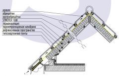 Paropranitsaymy membrane