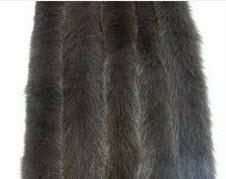Edge from natural fur of polar fox