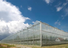Greenhouses are glass industrial new.