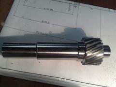 Shaft gear wheel